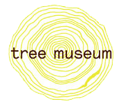 Constructal Law @ The Tree Museum