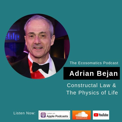 Constructal Law & The Physics of Life –the Ecosomatics podcast
