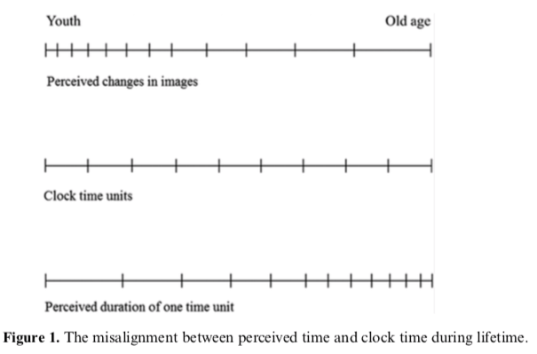 Physics explains why time passes faster as you age